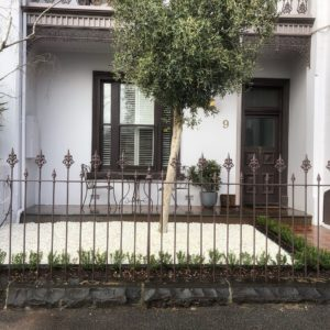 Front garden of terrace house with olive tree